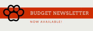 Brunswick CSD Budget Newsletter for the 2020-2021 Academic Year